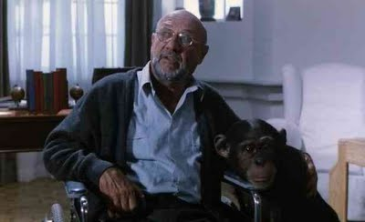 Donald Pleasence is also in John Carpenter's Halloween, which was inspired by Dario Argento's earlier work.